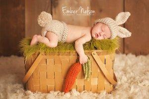 newborn baby rabbit carrot basket
